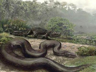 serpiente en el camino, es una enseñanza introspeccion del alma  y la vida orgullo sencilles alegria apatia la tentacion de la vida